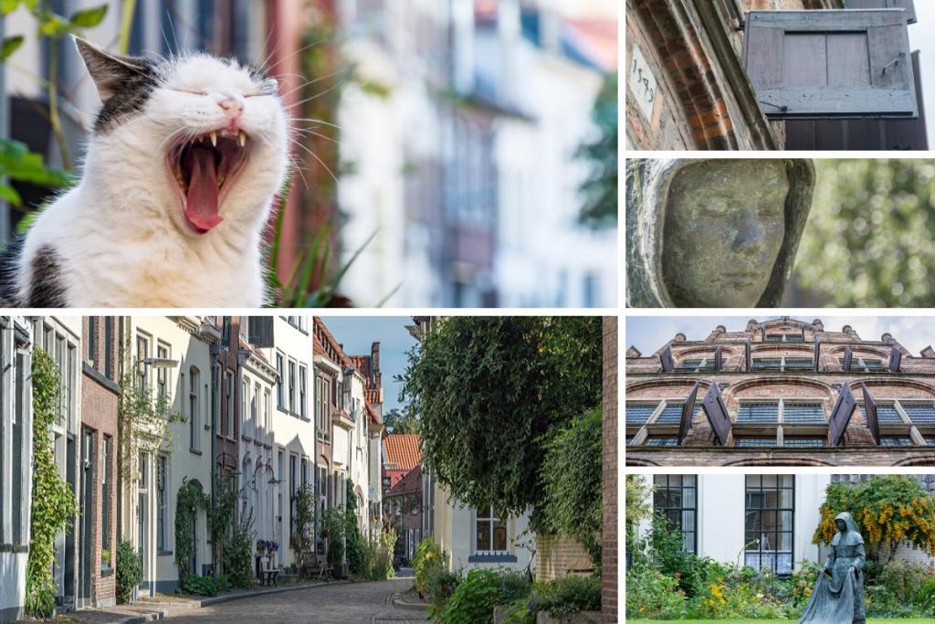 Collage van foto's gemaakt in Zutphen